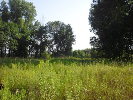 Find Wisconsin Hunting Land For Sale.